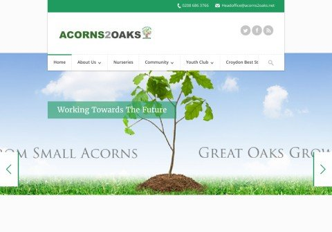 acorns2oaks.net thumbnail