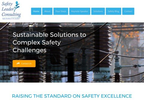 whois safetyleaderconsulting.net