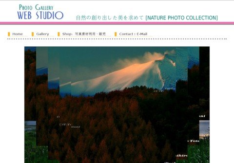 photo-gallery-webstudio.net thumbnail