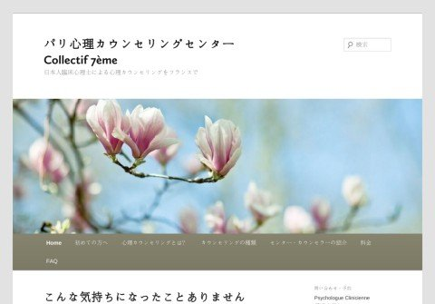 whois francejapon-psychotherapy.net