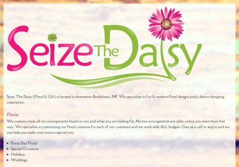 whois seizethedaisy.org