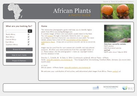 tropicalafricanplants.org thumbnail