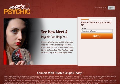 whois meetapsychic.net