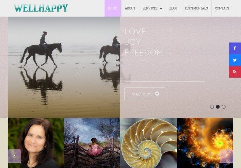 wellhappy.org thumbnail
