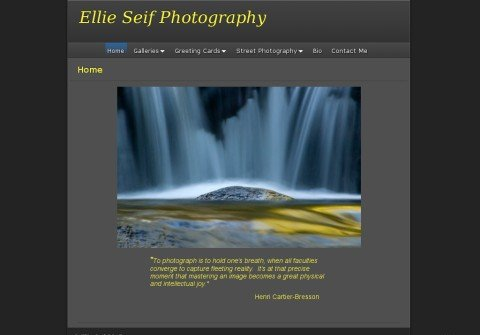 whois ellieseifphotography.com