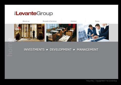 thelevantegroup.com thumbnail