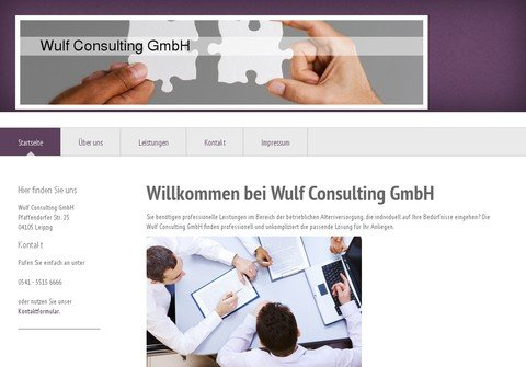 wulf-consulting.com thumbnail