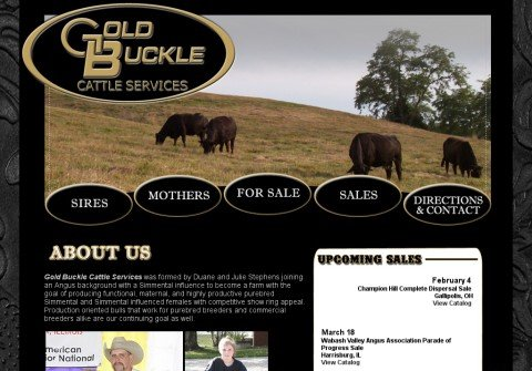 goldbucklecattle.com thumbnail