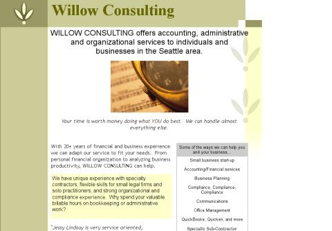 willowconsulting.com thumbnail