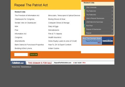 repealthepatriotact.com thumbnail