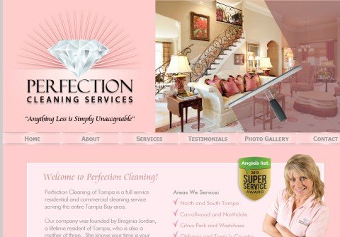 perfectioncleaningtampa.com thumbnail