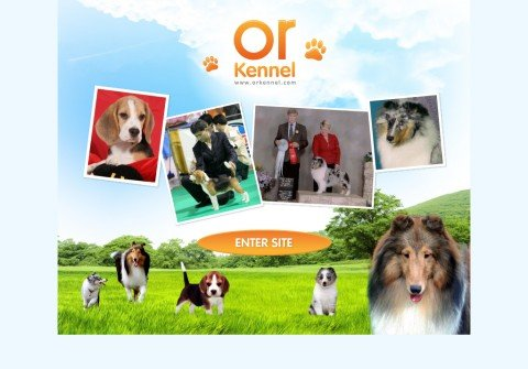 orkennel.com thumbnail