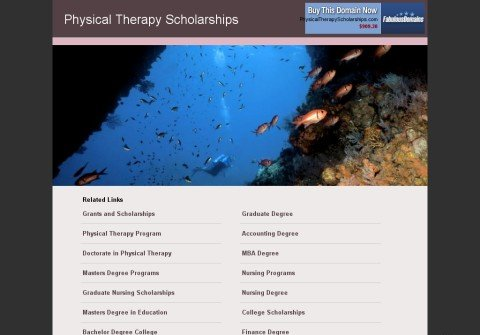physicaltherapyscholarships.com thumbnail