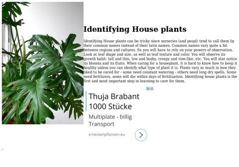 identifyinghouseplants.net thumbnail